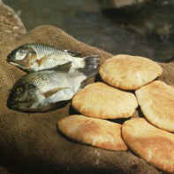 Loaves fishes tilapia002