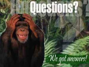 questions_web